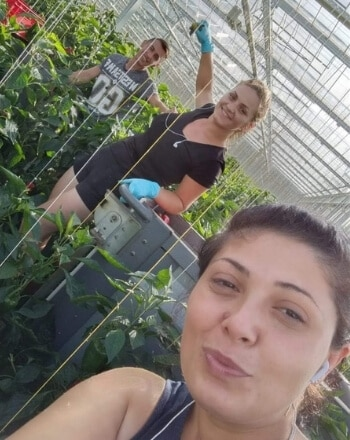 Personeel in de glas- en tuinbouw